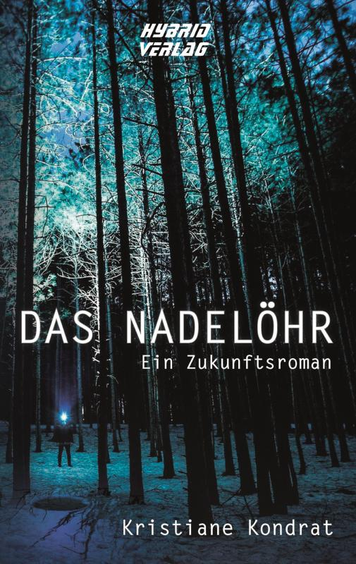 Cover-Bild Das Nadelöhr