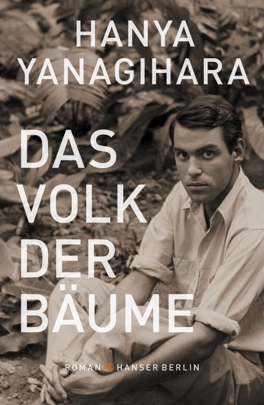 Cover-Bild Das Volk der Bäume