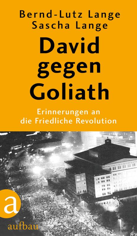 Cover-Bild David gegen Goliath