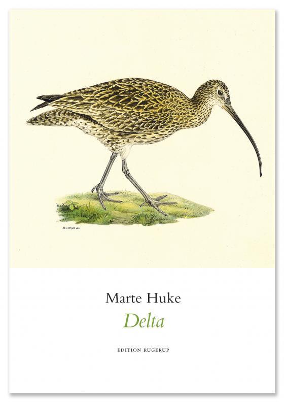 Cover-Bild Delta