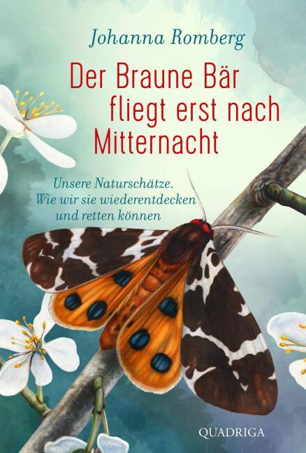 Cover-Bild Der Braune Bär fliegt erst nach Mitternacht