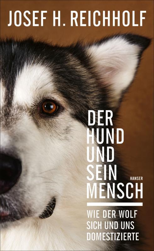 Cover-Bild Der Hund und sein Mensch