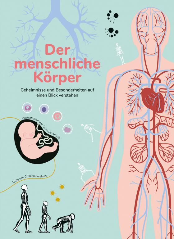 Cover-Bild Der menschliche Körper
