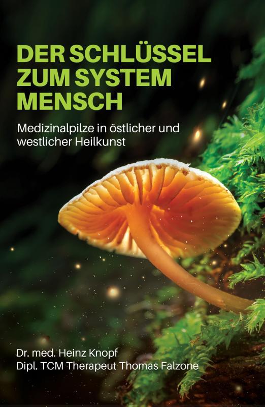 Cover-Bild Der Schlüssel zum System Mensch