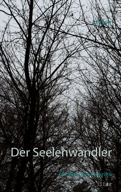 Cover-Bild Der Seelenwandler