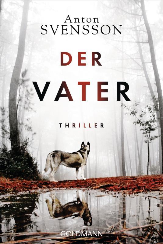 Cover-Bild Der Vater
