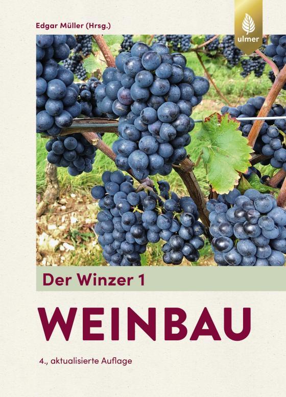 Cover-Bild Der Winzer 1