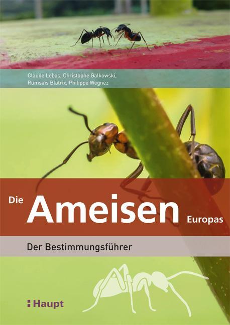 Cover-Bild Die Ameisen Europas