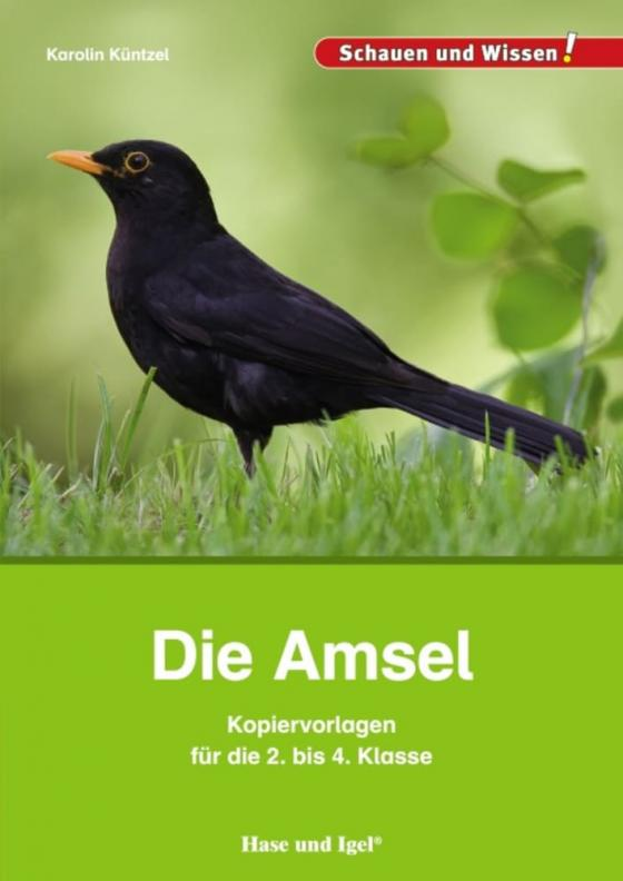 Cover-Bild Die Amsel - Kopiervorlagen für die 2. bis 4. Klasse