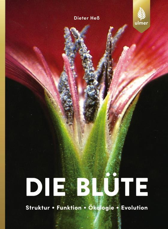 Cover-Bild Die Blüte