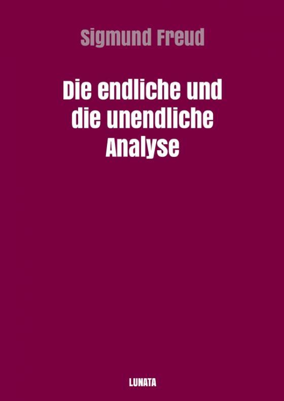 Cover-Bild Die endliche und die unendliche Analyse