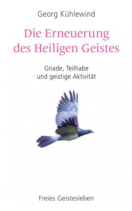 Cover-Bild Die Erneuerung des Heiligen Geistes