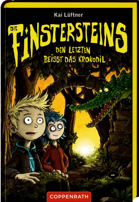 Cover-Bild Die Finstersteins (Bd. 3)