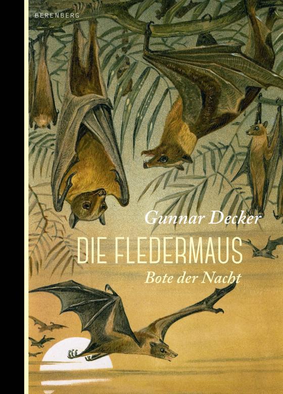 Cover-Bild Die Fledermaus