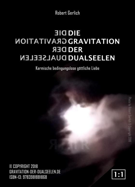 Cover-Bild Die Gravitation der Dualseelen