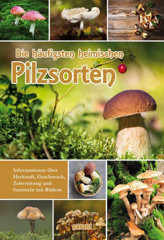 Cover-Bild Die häufigsten heimischen Pilzsorten
