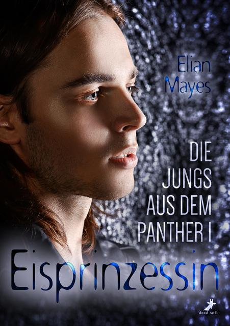 Cover-Bild Die Jungs aus dem Panther