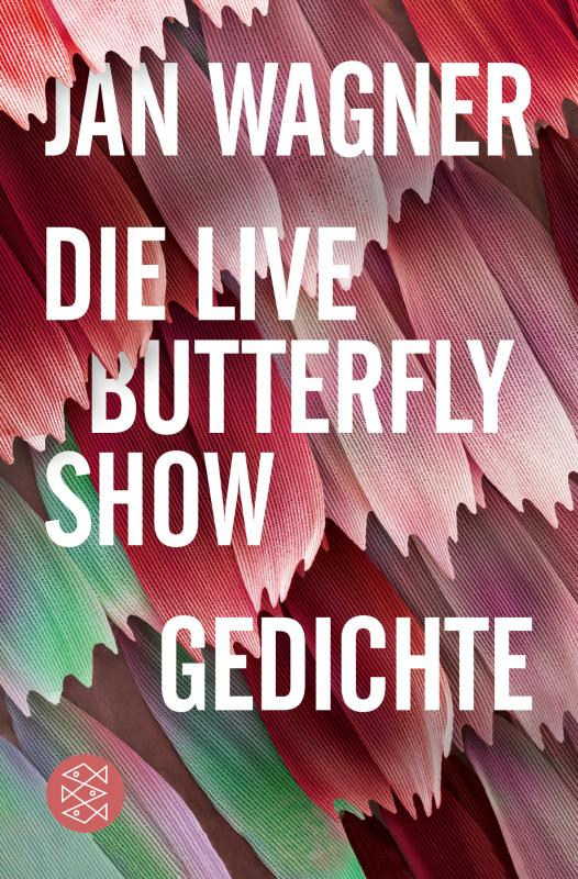 Cover-Bild Die Live Butterfly Show