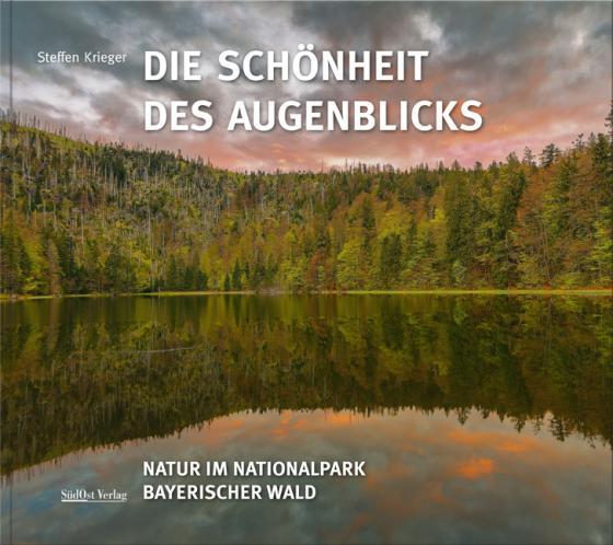 Cover-Bild Die Schönheit des Augenblicks