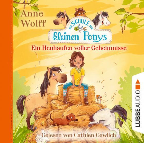 Cover-Bild Die Schule der kleinen Ponys - Ein Heuhaufen voller Geheimnisse