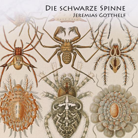 Cover-Bild Die schwarze Spinne