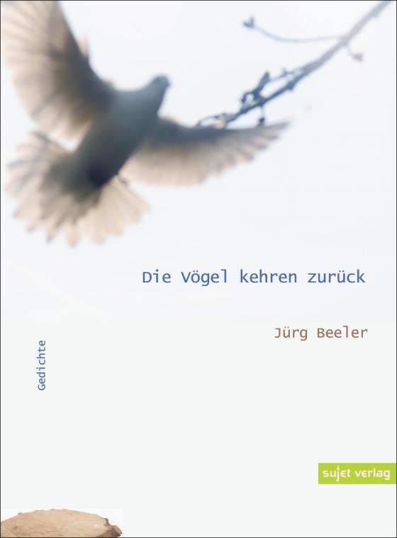 Cover-Bild Die Vögel kehren zurück