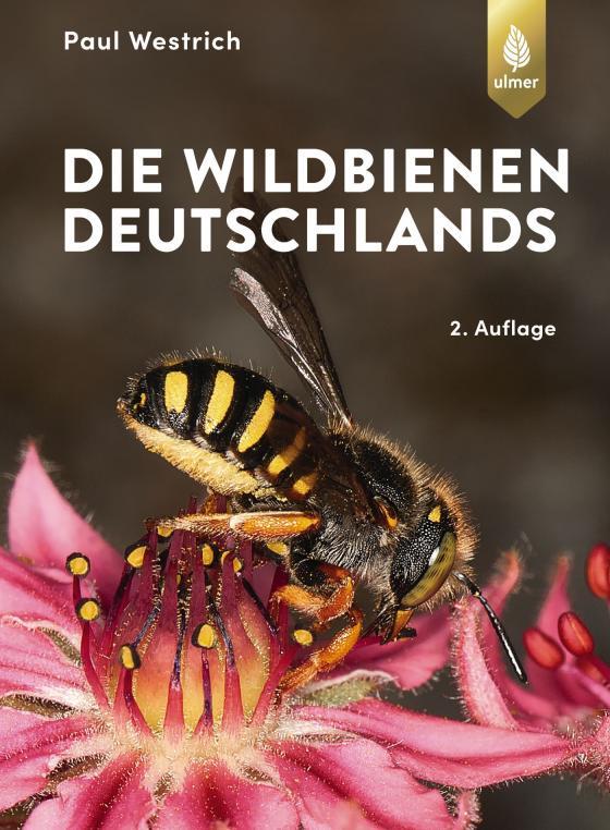 Cover-Bild Die Wildbienen Deutschlands