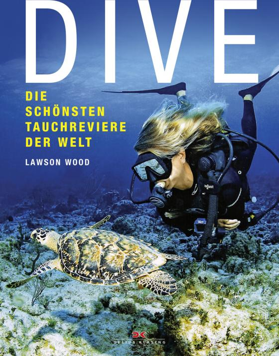 Cover-Bild Dive