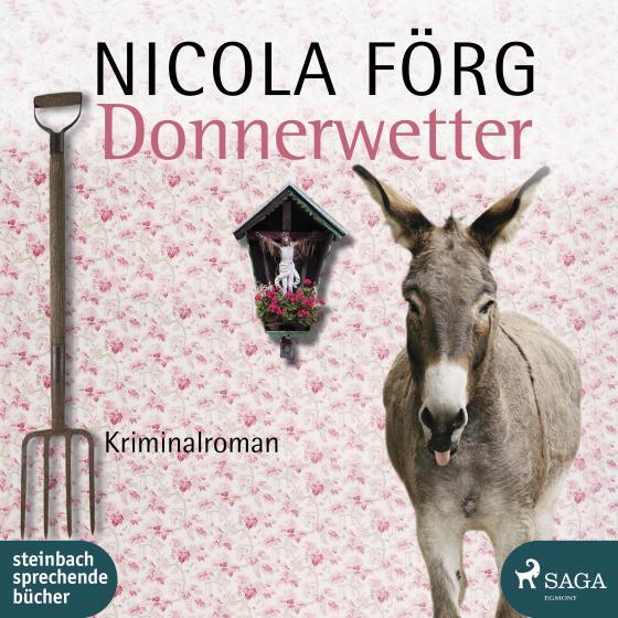 Cover-Bild Donnerwetter