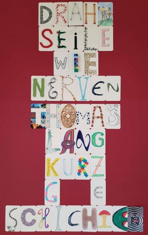 Cover-Bild Drahtseile wie Nerven