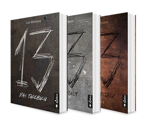 Cover-Bild Dreizehn Band 1-3: Das Tagebuch / Die Anstalt / Das Spiegelbild