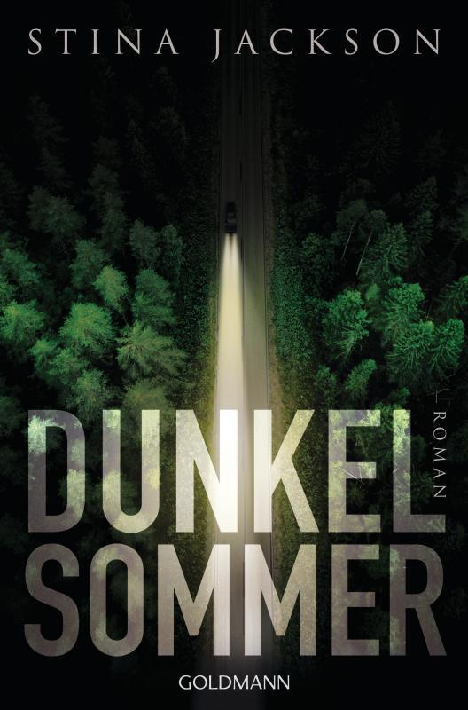 Cover-Bild Dunkelsommer
