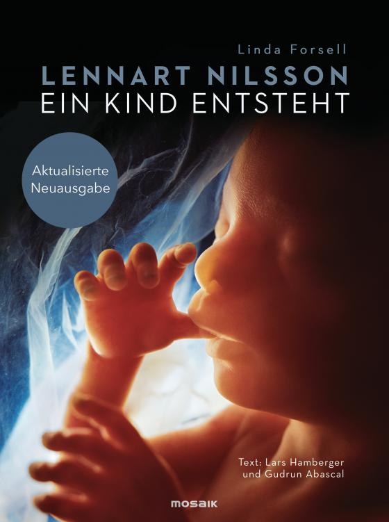 Cover-Bild Ein Kind entsteht