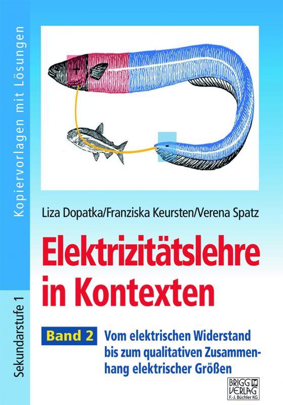 Cover-Bild Elektrizitätslehre in Kontexten - Band 2