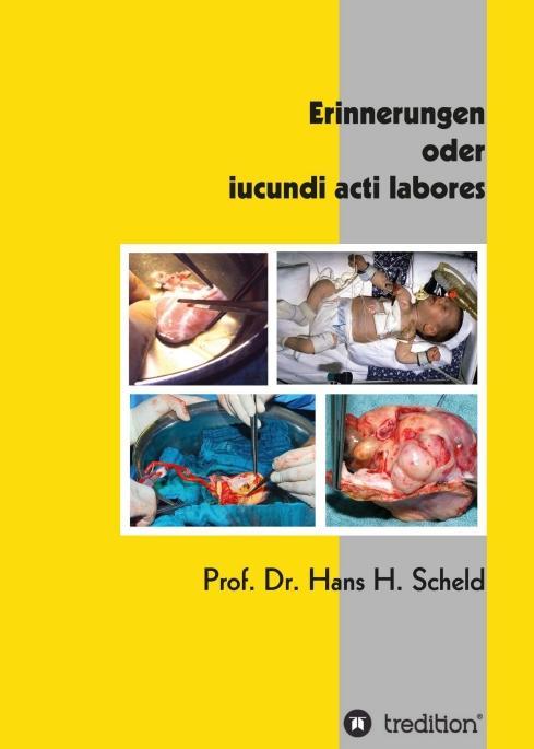 Cover-Bild Erinnerungen oder iucundi acti labores