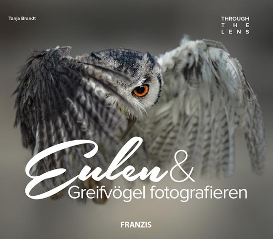 Cover-Bild Eulen & Greifvögel fotografieren