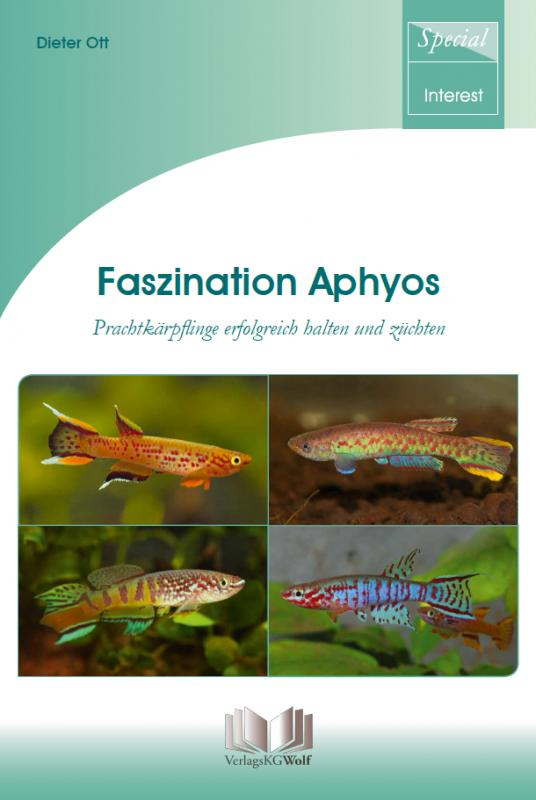 Cover-Bild Faszination Aphyos