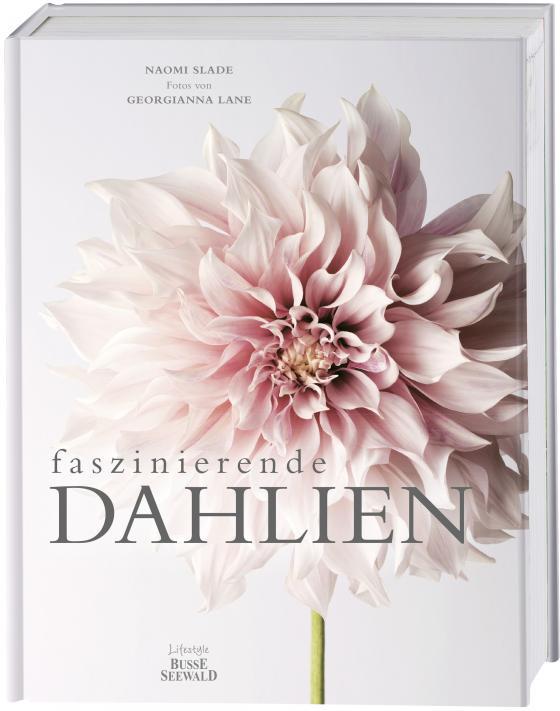 Cover-Bild Faszinierende Dahlien