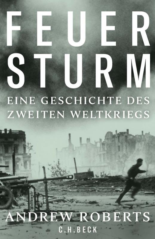 Cover-Bild Feuersturm
