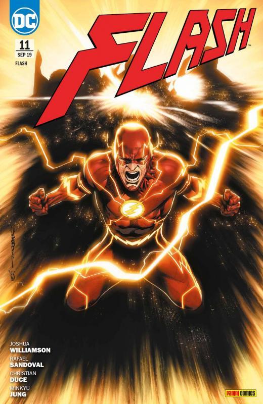 Cover-Bild Flash