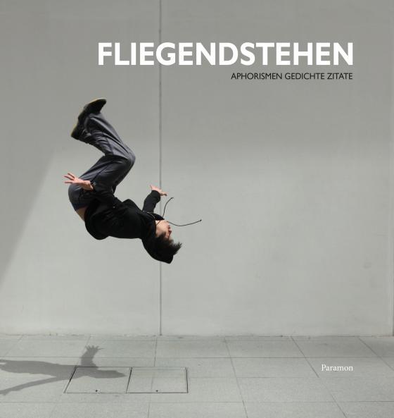 Cover-Bild Fliegendstehen