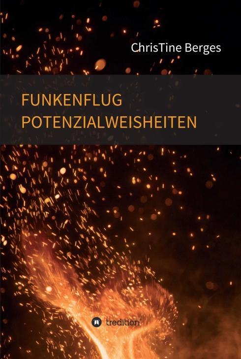 Cover-Bild Funkenflug Potenzialweisheiten