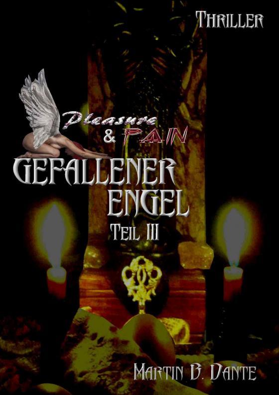 Cover-Bild Gefallener Engel