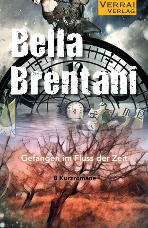 Cover-Bild Gefangen im Fluss der Zeit