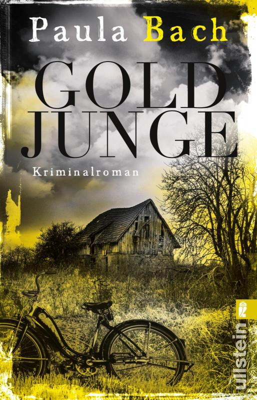 Cover-Bild Goldjunge