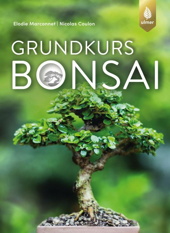 Cover-Bild Grundkurs Bonsai