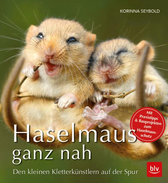 Cover-Bild Haselmaus ganz nah