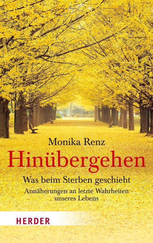 Cover-Bild Hinübergehen