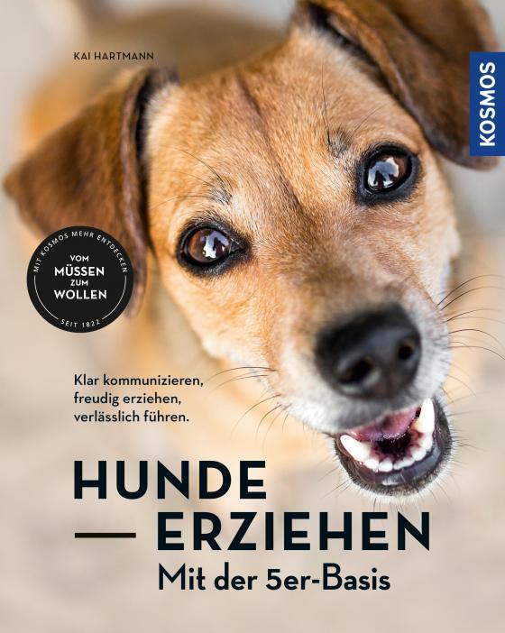 Cover-Bild Hunde erziehen – mit der 5er-Basis