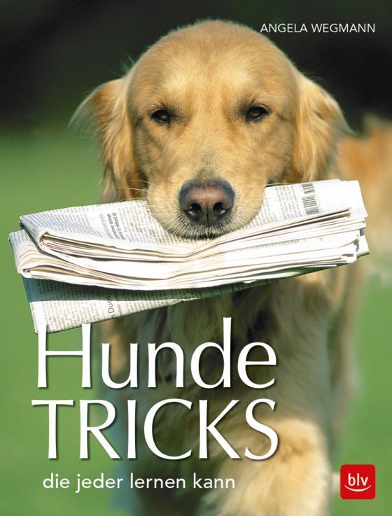 Cover-Bild Hundetricks